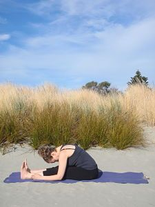 Paschimottanasana - Seated Forward Bend