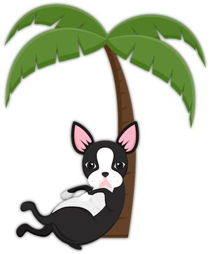 Boston Terrier Palm Tree from Boston Terrier Lover Emoji Stickers for iMessage For Puppy and Dog Lovers. #bostonterrier #bostonterriercult #palmtrees #saltlife #beachliving