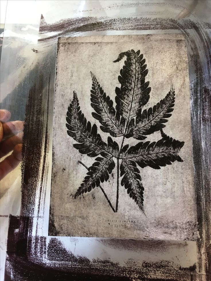 Printmaking Printing Lithography Paper Plates Prints Lobster Workshops at RURAL ARTS & The 9 best Lithographic paper printing images on Pinterest ...