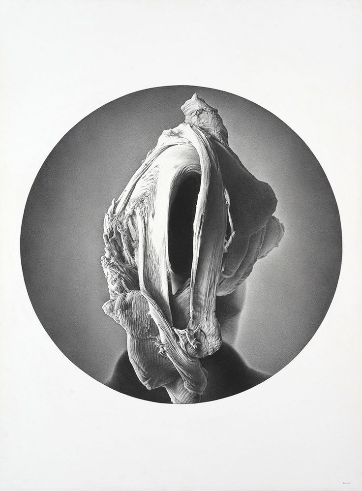 James Bonnici, Head Variation Carbon pencil on paper, 56 x 78 cm, available