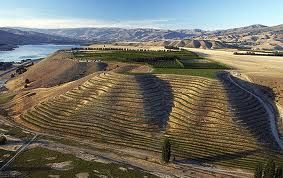 Central otago NZ , Great Pinot Noir growing region