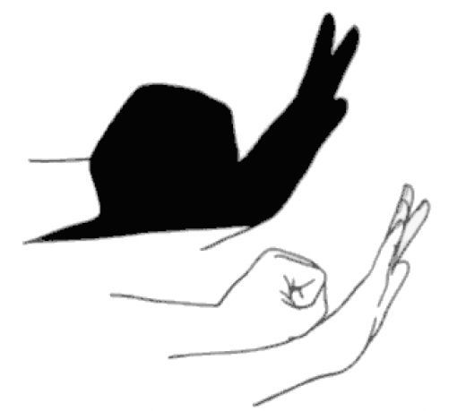 Hand Shadows to Entertain Kids and Adults