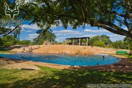 KNP - Pretoriuskop - Pool