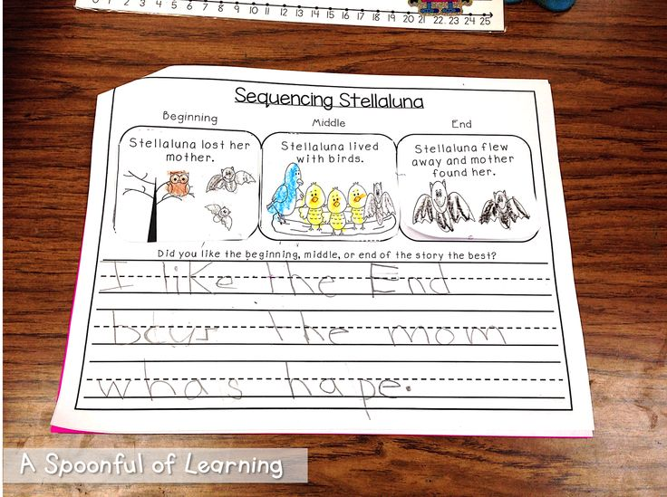 intro story elements and sequencing during bat unit with stellaluna