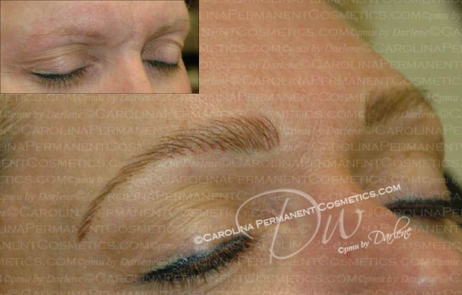 Celebrity Brows & Lashes Reviews, Charlotte, NC | Hair ...