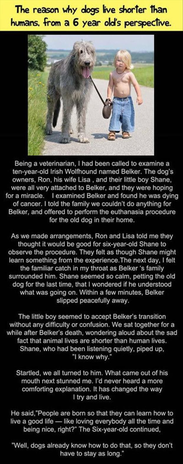 Faith In Humanity Restored –