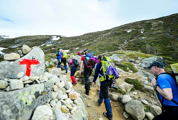 Her er Norges fineste fjellturer Dette er sommerens beste familieturer til fjells