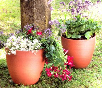 Frost Garden Pots 39 best our new planters images on pinterest clay pots terracotta large red clay tall bell garden planters brand new eco friendly frost resistent workwithnaturefo