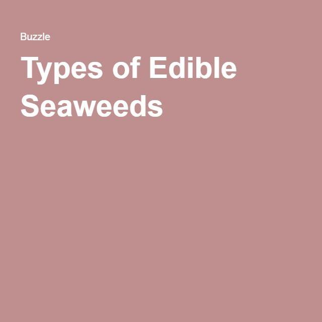 Types of Edible Seaweeds