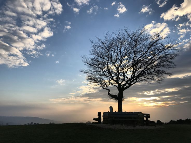 The tree on cleeve hill (cleeve common) bishops cleeve #bishopscleeve #cleevecommon #tree #sunset #cotswolds #cotswoldwalks #cleevehill