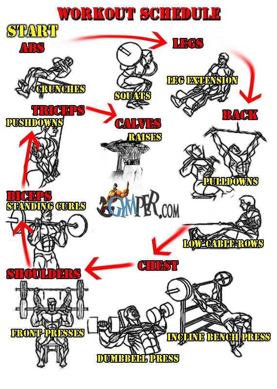 Home Gym Workout Routine - I don't have all these things - but should still be able to make it work.