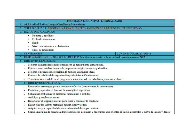 B.- PEP FUNCIONES EJECUTIVAS.doc