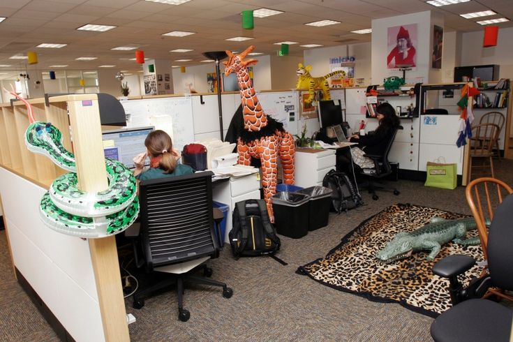 Why Google's workplaces make other office workers envious | DT News Bahrain