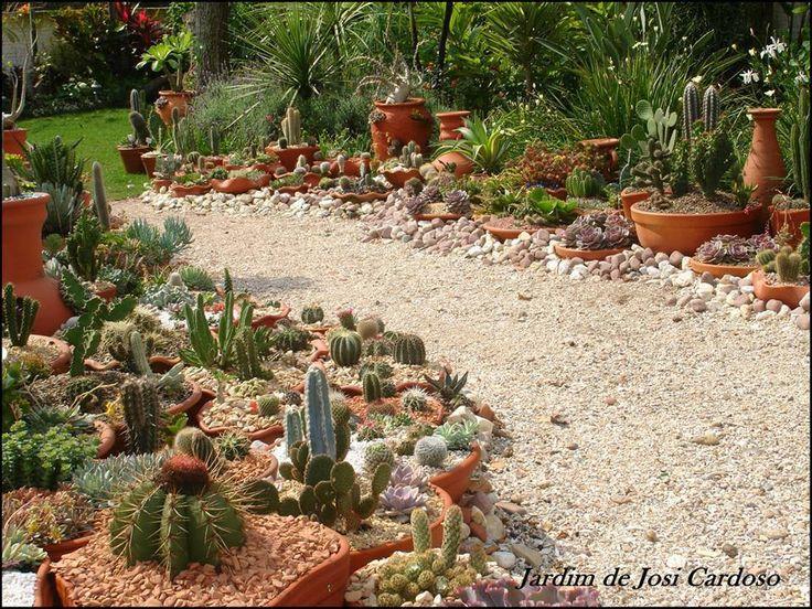 Cactus Garden Ideas Pictures Photograph Cactus Garden ya