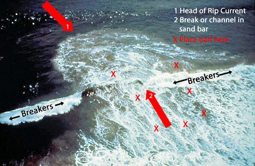 Best 25 surf fishing ideas on pinterest surf fishing for Surf fishing bait