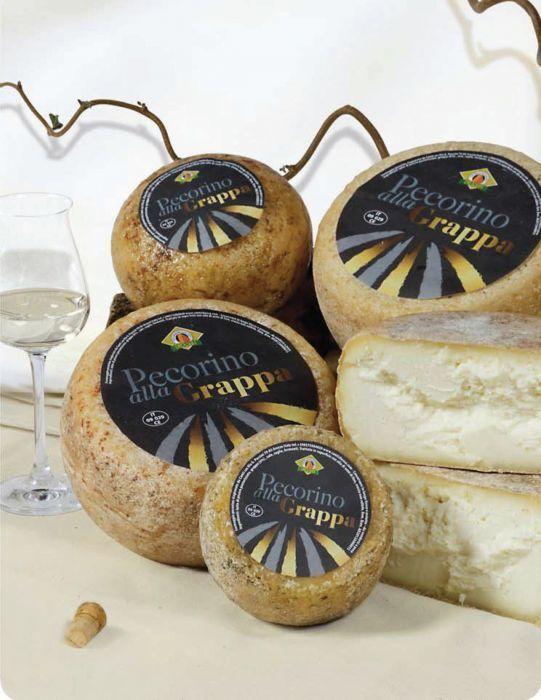 Il pecorino alla grappa presenta una pasta bianchissima e compatta. Abbiamo sposato il pecorino, prodotto in Toscana, ad una grappa egualmente distillata in Toscana, di sapore morbido, ed abbiamo ottenuto un formaggio odoroso, aromatico, di sapore intenso. Il formaggio non ha più il potere inebriante dell'alcool, ma ne conserva l'aroma. Si abbina con salumi, composte, marmellate.  20,50€  www.canticheese.com #canticheese #formaggio #pecorino #grappa #fromage #cheese #Käse