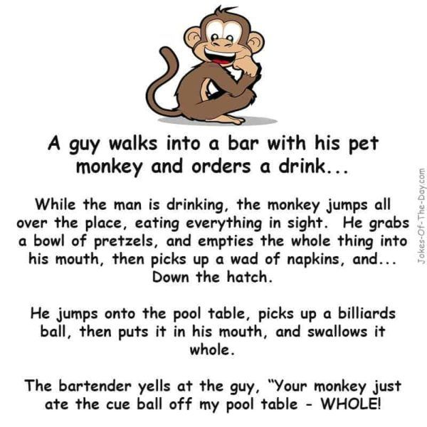 A Man Walked Into A Bar With His Pet Monkey Sarcastic Quotes Funny Monkeys Funny Pet Monkey