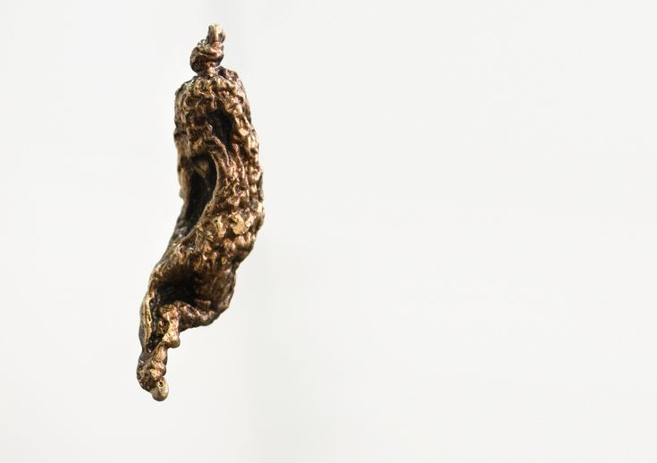 2015 Ané Lategan  Dissecting the gut Installation, dimensions variable Pig gut, glue, salt, bronze, found metal, string, plaster