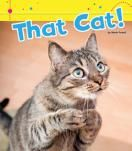 That Cat! - from the Word Families series, by Marie Powell: Learning about word families is an essential skill for helping young readers become familiar with both the sounds and the spellings of words. These silly animal stories highlight common rhyming words with endings that are spelled the same way.  A fun way to introduce kids to phonics and early literacy skills.