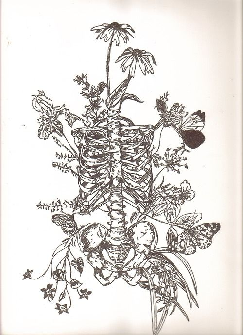This is very close to the tattoo I want but I want the roots to wrap up around the spine and maybe a bird in there somewhere.