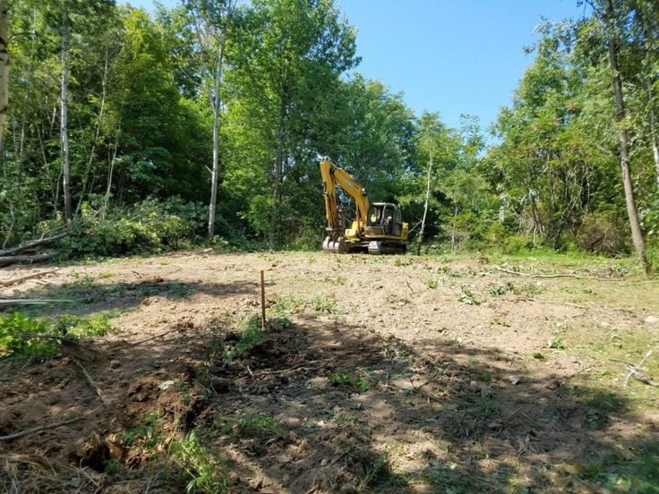 Treemendous Tree Care undertakes tree & land clearance in