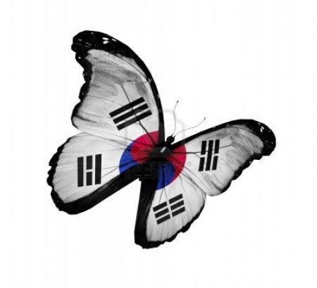 South Korea Flag Butterfly Flying High -