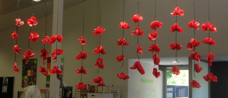 ANZAC Day display. Library display. Red oriental poppies.