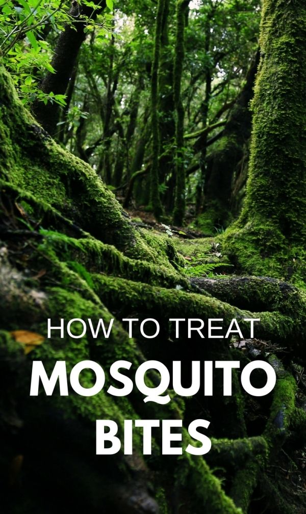 It's a good chance to get mosquito bites on summer vacation, even more for kids outdoors in backyard! Camping, hiking, RV travel, trail running, or in the yard, mosquito repellent may fail. For tips on how to treat mosquito bites, there are DIY homemade natural remedies with plants, herbs, and essential oils for skin to get relief from big swollen bites and stop itching, scars, swelling, and redness. You may want to add the remedy to the camping checklist of things to pack for vacation…