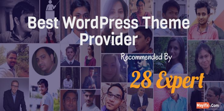 Find out Best WordPress theme provider in 2016 recommended by 28 expert. No…