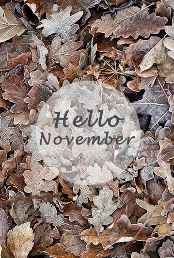 Next Theme: Hello November