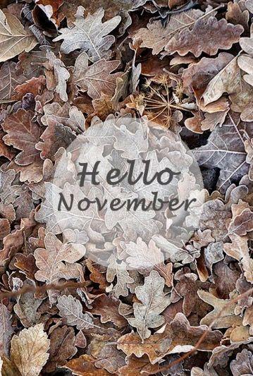 Next Theme: Hello November