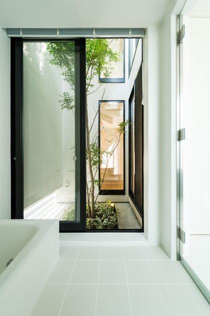 バス/トイレ事例:坪庭へと続く浴室(南笹口の家 〜斜め壁のある家〜)
