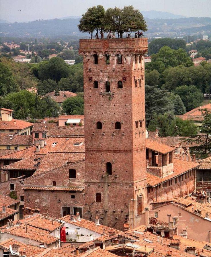 A Torre Guinigi é a torre mais importante de Lucca, na Toscana, Itália Central. É uma das poucas torres remanescentes dentro dos muros da cidade e sua principal característica são os jardins no telhado da torre.