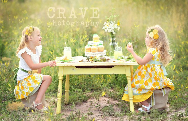 I love stylized theme photography and would love to do a lemonade stand like this session with two sisters. So cute!
