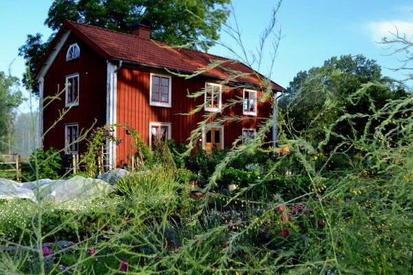 Swedish kitchengarden, made by Sara Backmo. #skillnadens #kitchengarden #growfood #garden #gardening #potager #vegetables