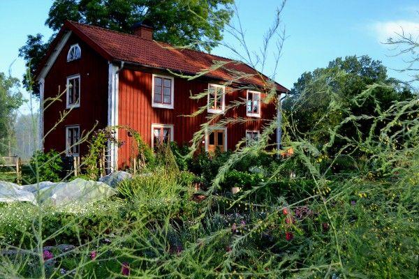 Swedish kitchengarden, made by Sara Backmo. #skillnadens #kitchengarden #growfood #garden #gardening #potager #vegetables