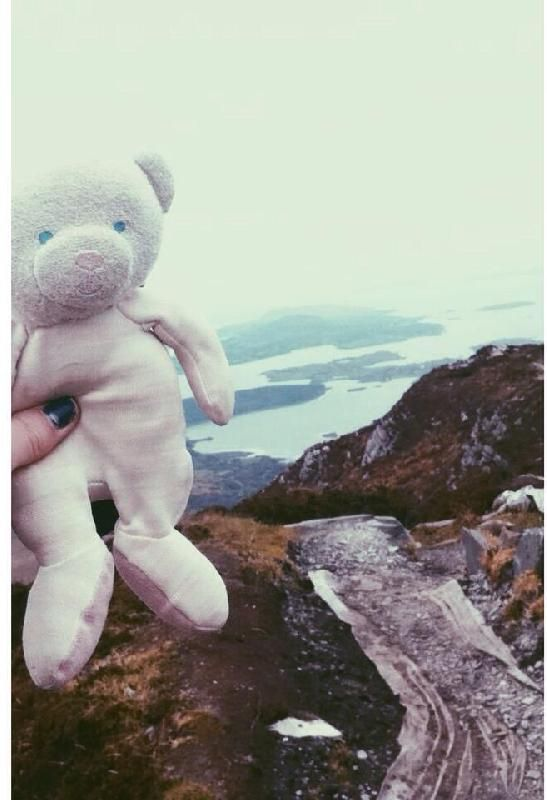 Lost on 10 Oct. 2015 @ Letterfrack, Diamond Hill, Irland. I think I lost my teddy during the ascent of Diamond Hill. It means a lot to me, I took him everywhere since childhood, if someone saw it would be really nice to let me know .. Visit: https://whiteboomerang.com/lostteddy/msg/cnzjlj (Posted by PALATICKY Lauriane on 20 Oct. 2015)
