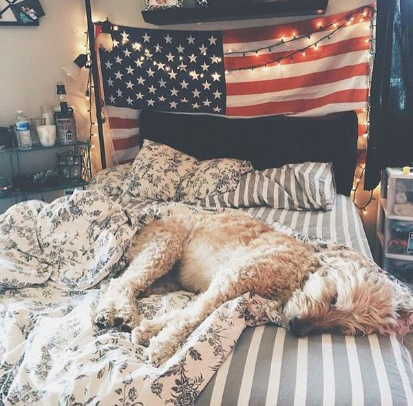 College Dorm Room With American Flag Display