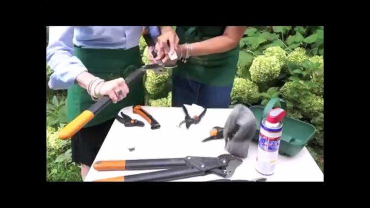 Pulizia e manutenzione degli attrezzi da giardino . 2 Ladies in giardino