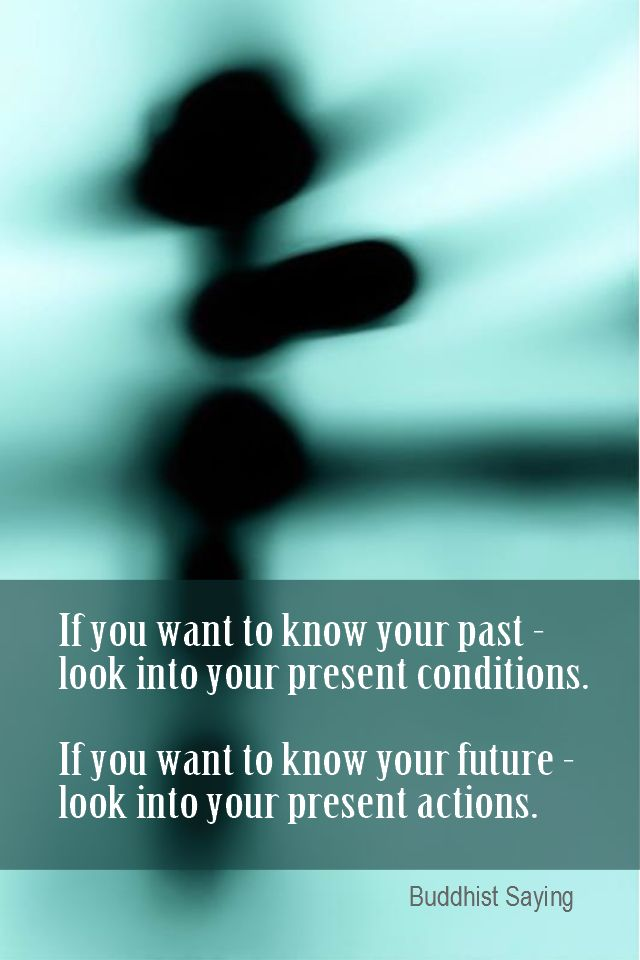 Daily Quotation for July 20, 2014  #quote #quoteoftheday  If you want to know your past - look into your present conditions. If you want to know your future - look into your present actions. - Buddhist Saying