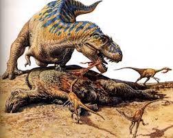 Картинки по запросу тиранозавр рекс против гигантозавра