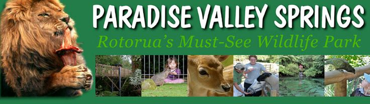 Paradise Valley Springs - interactive wildlife park in New Zealand. I totally want to go and feed the wallabies!