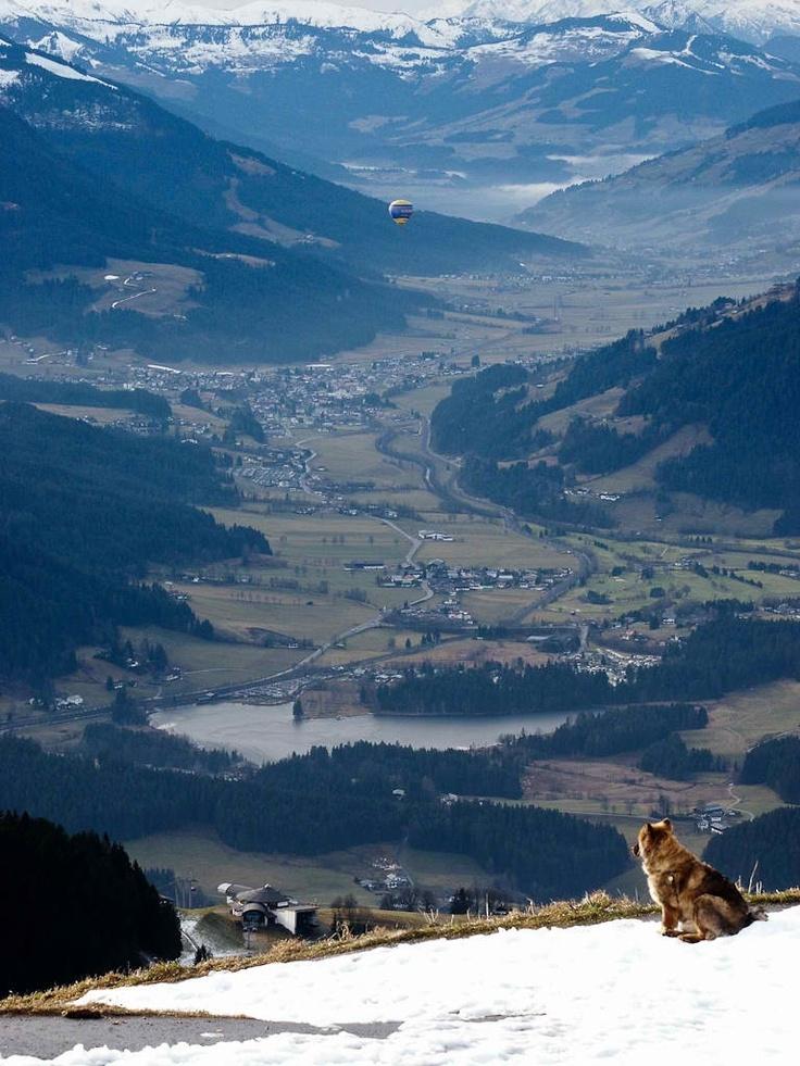 Kitzbuheler Horn, Austria<3