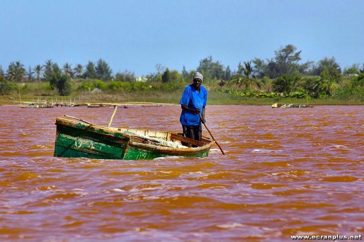 La culture du sel au Lac Rose (lac Retba) Senegal