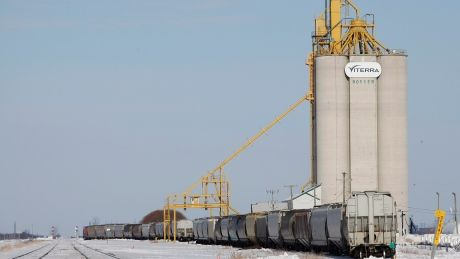 Grain oil shipments sitting idle on Prairies as railways struggle to meet demand
