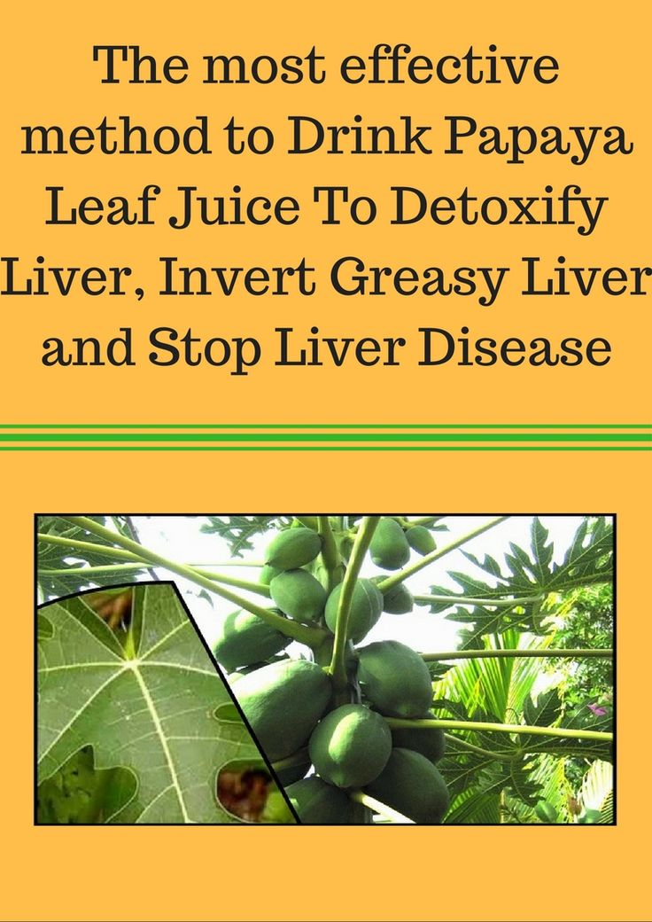 The most effective method to Drink Papaya Leaf Juice To Detoxify Liver, Invert Greasy Liver and Stop Liver Disease