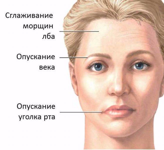 Экология здоровья: Данный блок упражнений направлен на коррекцию возрастных изменений лица, а также для избавления от лицевой асимметрии. При выполнении этих упражнений не применяйте силу. Если Вы почувствуете боль, немедленно прекращайте. Если перед началом упражнений у Вас плохое самочувствие – не делайте упражнений.