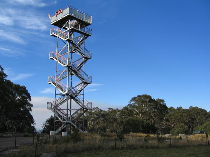 Lookout Tower on top of Mt Donna Buang.  Hmmmm maybe not for me!