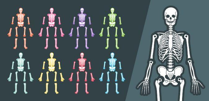 Printable Skeleton Template