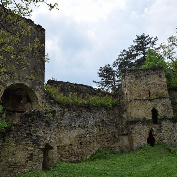 Citadelle de Saschiz.